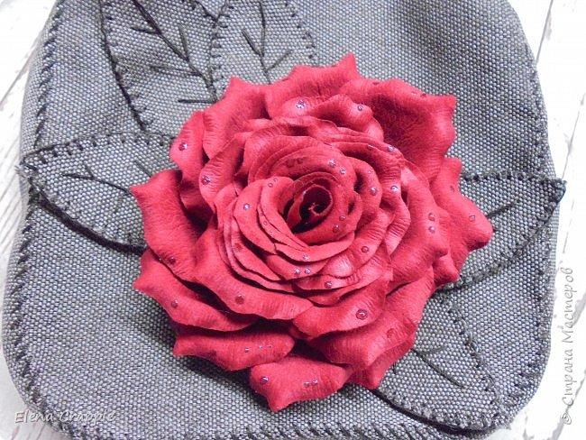 Роза   фото 8