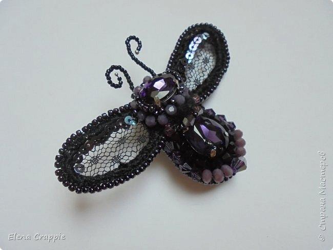 Броши насекомые.Муха,жучок и бабочка. фото 22