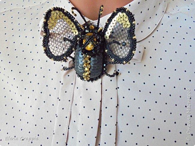 Броши насекомые.Муха,жучок и бабочка. фото 4