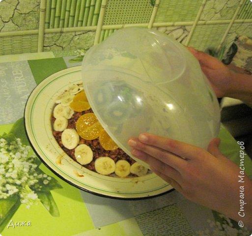 """Здравствуйте! Сегодня я вам расскажу как я готовлю мой любимый торт """"Муравейник"""". Её может приготовить даже 10-летний ребёнок. А ещё мне помогал мой 5 летний братик. Мама работала фотографом.  Это мой второй мастер класс. В самом первом мастер классе я показывала как я делаю шоколадное масло (почти нутелла) http://stranamasterov.ru/node/1098409 У моей мамы есть блокнотик с рецептами, и я учусь по нему готовить выпечку. Готовить очень весело!  Нам понадобится: 200 г размягчённого маргарина или сливочного масла 0,5 стакана сахара 0,5 стакана сметаны 1 чайная ложка разрыхлителяь теста (или сода гашенная уксусом) Мука  1 банка вареной сгущенки Фрукты чтобы украсить торт фото 27"""