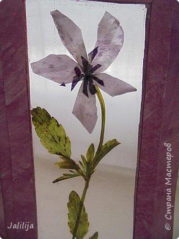 Приветствую всех  гостей своей странички и представляю свои открытки. Я начала работать недавно с засушенными растениями и уже представляла панно. Изучая работы мастеров СМ наткнулась на работы Инны Яковлевой в её технике лами-арт. Загорелось попробовать. И появились эти открытки. фото 7