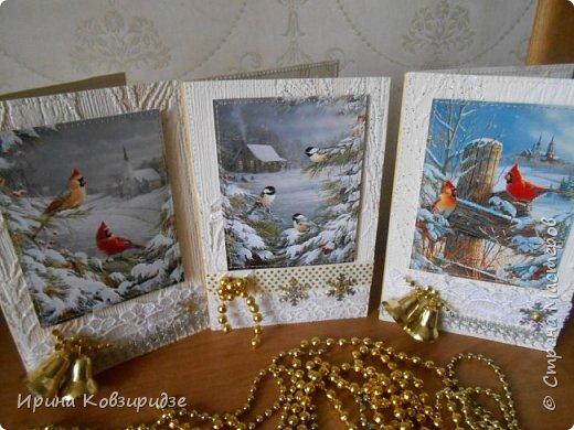 """Это 3 открытки """"Птицы зимой"""" фото 1"""