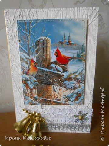 """Это 3 открытки """"Птицы зимой"""" фото 5"""