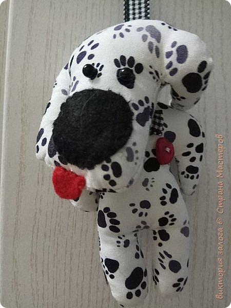 Весёлый щенок Доби фото 1