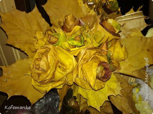 Осень фото 4