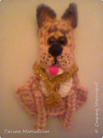 Привет всем!  Сегодня на повестке дня (или ночи!)  - собачки-магнитики.  Ничего объяснять не буду, просто смотрите и получайте удовольствие. фото 9
