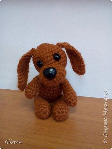 Здравствуйте!  И вот мои новые похвастушки ))  Собачки-амигуруми. Эта такса - предмет моей особой гордости, поскольку это первая игрушка, связанная мной самостоятельно, без мастер-класса.  фото 5