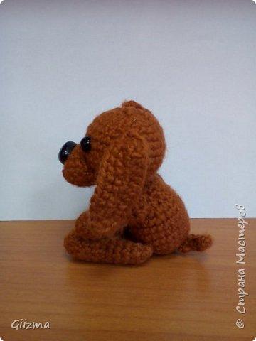 Здравствуйте!  И вот мои новые похвастушки ))  Собачки-амигуруми. Эта такса - предмет моей особой гордости, поскольку это первая игрушка, связанная мной самостоятельно, без мастер-класса.  фото 6