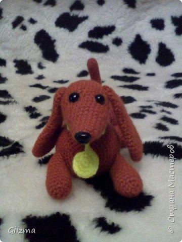 Здравствуйте!  И вот мои новые похвастушки ))  Собачки-амигуруми. Эта такса - предмет моей особой гордости, поскольку это первая игрушка, связанная мной самостоятельно, без мастер-класса.  фото 1
