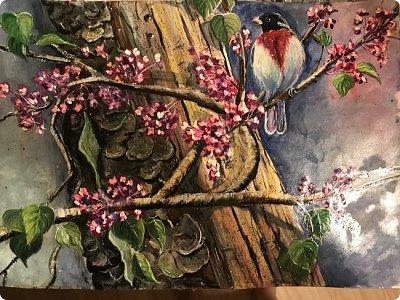 Картины акварелью, моя Деревня  фото 11