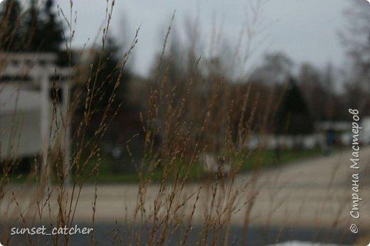 Ноябрьский выходной в Казани. Езжу туда развеяться и побродить на свежем воздухе. Конечно же, с фотоаппаратом :) фото 2