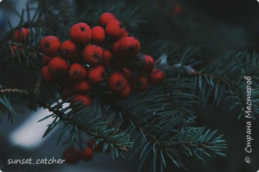 Ноябрьский выходной в Казани. Езжу туда развеяться и побродить на свежем воздухе. Конечно же, с фотоаппаратом :) фото 1