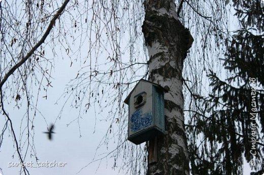 Ноябрьский выходной в Казани. Езжу туда развеяться и побродить на свежем воздухе. Конечно же, с фотоаппаратом :) фото 9