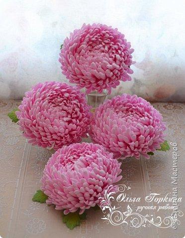 Немного цветов к декабрю. фото 8