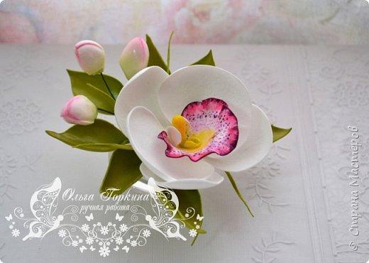 Немного цветов к декабрю. фото 7