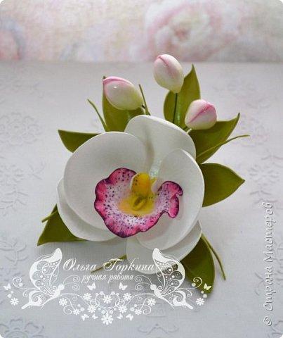 Немного цветов к декабрю. фото 6