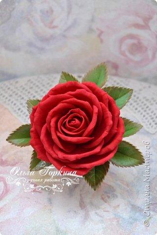 Немного цветов к декабрю. фото 26