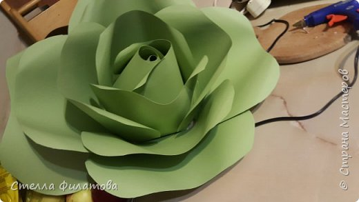 большие розы для украшения класса к дню рождения классного руководителя. фото 5