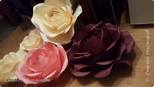 большие розы для украшения класса к дню рождения классного руководителя. фото 6
