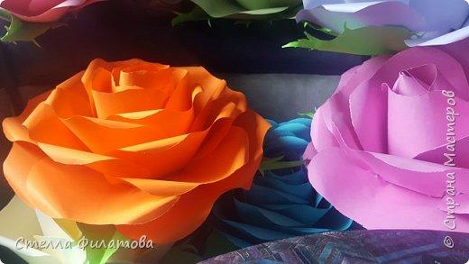 большие розы для украшения класса к дню рождения классного руководителя. фото 8
