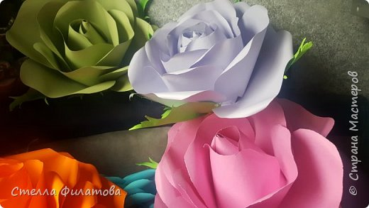 большие розы для украшения класса к дню рождения классного руководителя. фото 9