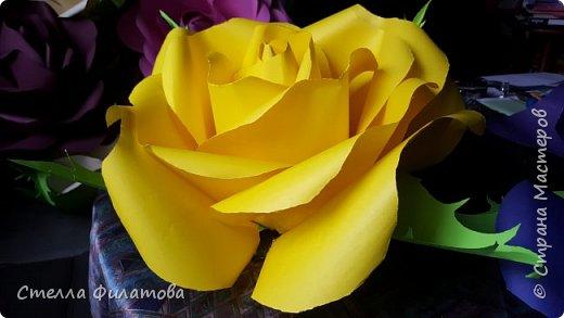 большие розы для украшения класса к дню рождения классного руководителя. фото 10