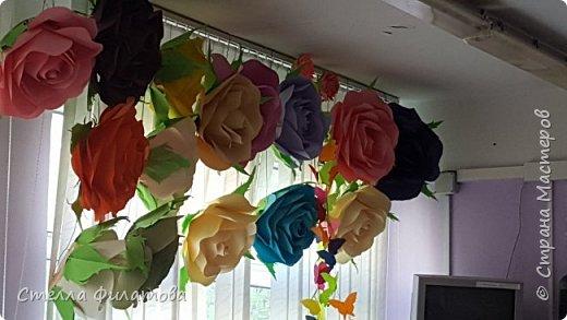 большие розы для украшения класса к дню рождения классного руководителя. фото 1