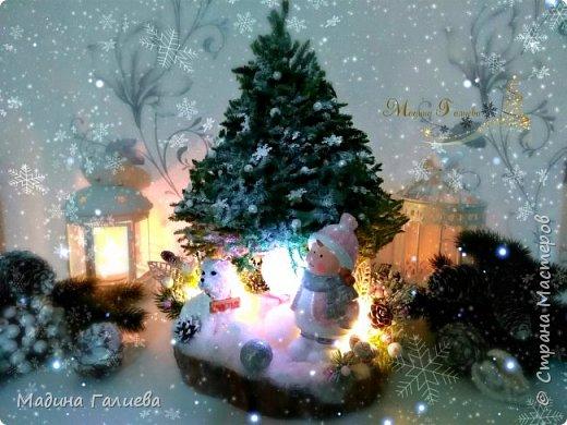 """Привет всем мастерам!!  Сегодня хочу поделиться своей объемной новогодней композицией """"Зимняя сказка"""". Всем наверное будет интеревсно из чего же сделана сама елочка?.... Елочку я сделала из природного материала - мха, который собирала летом в нашем сосновом бору. Этот мох потрясающий, он не крошится и не ломается ,а также сохраняет свой натуральный цвет. А самое интересное что мох выглядит как еловые веточки  натуральной ели , только в уменьшенном масштабе. фото 11"""