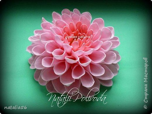 Всем ДОБРЫЙ ДЕНЬ!!! Давно здесь не была... Вот решила выставить свои работы из зефирного и Иранского фоамирана ... Приглашаю вас посмотреть и оценить мои цветочки для моих  внучек...  Все эти георгинки сделаны на резиночке из зефирного фома... Делала для моих дорогих внучек , которые живут в Туле...  фото 5