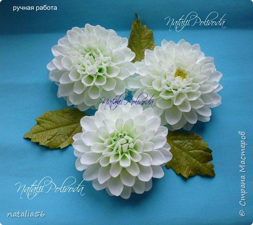 Всем ДОБРЫЙ ДЕНЬ!!! Давно здесь не была... Вот решила выставить свои работы из зефирного и Иранского фоамирана ... Приглашаю вас посмотреть и оценить мои цветочки для моих  внучек...  Все эти георгинки сделаны на резиночке из зефирного фома... Делала для моих дорогих внучек , которые живут в Туле...  фото 2