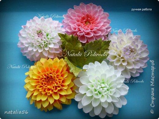 Всем ДОБРЫЙ ДЕНЬ!!! Давно здесь не была... Вот решила выставить свои работы из зефирного и Иранского фоамирана ... Приглашаю вас посмотреть и оценить мои цветочки для моих  внучек...  Все эти георгинки сделаны на резиночке из зефирного фома... Делала для моих дорогих внучек , которые живут в Туле...  фото 1