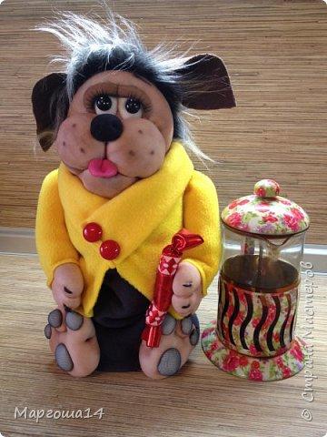 Привет,Страна Мастеров!!! Продолжаю шить маленьких собачек (рост 10 - 11 см) на подарочки. Этих первых двух сшила и сразу подарила.Людям радость,а мне приятно. фото 11