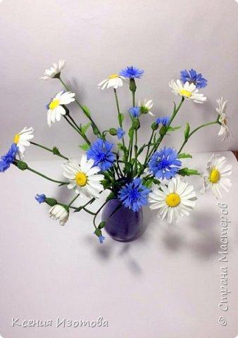 """""""В чистом поле прекрасный цветок – Родилась в платье белом ромашка, И влюбился в неё василёк – Мальчик в ярко – синей рубашке."""" (автор стихов Александр Курако) Интерьерная композиция """"Васильки с ромашками"""" из холодного фарфора. Лепила 7 ночей, хотела сделать больше, но в вазочку больше не поместилось) фото 2"""