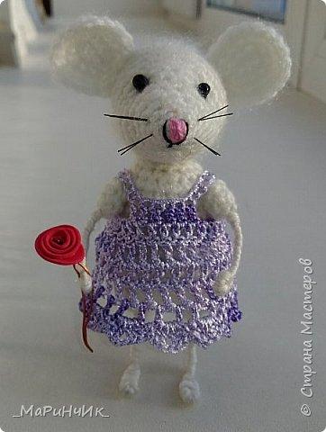 Связалась подружка для белой мышки. По МК Елены Никитиной. фото 5