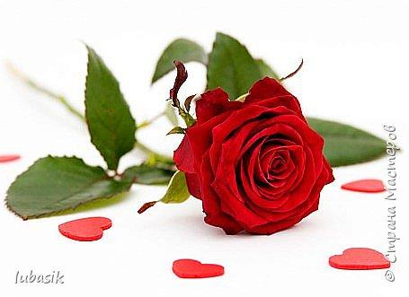 2 декабря - день рождения у замечательной, талантливой мастерицы Наташеньки (Корната). Дорогая Наташенька, от всего сердца поздравляю тебя с этим замечательным днём! Счастья тебе, дорогая и пусть всё в твоей жизни будет только так, как хочется тебе, не взирая ни на что! Здоровья тебе и всем твоим близким! фото 3