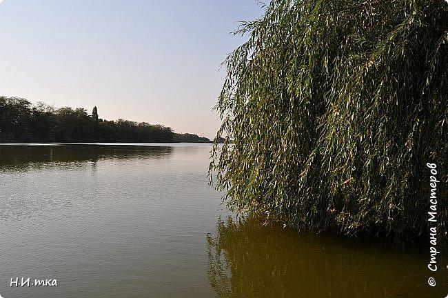 Побывала я нынче в тёплых краях в сентябре. В моей ладони ракушечник с пляжа Азовского моря.  Начну с Краснодара, и расскажу всё по порядку. фото 13