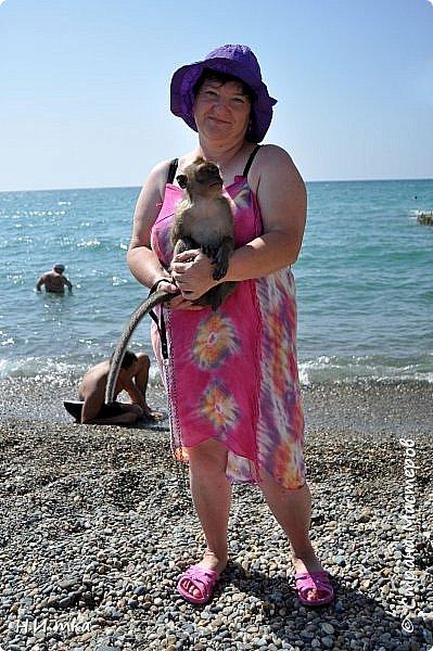 Побывала я нынче в тёплых краях в сентябре. В моей ладони ракушечник с пляжа Азовского моря.  Начну с Краснодара, и расскажу всё по порядку. фото 20