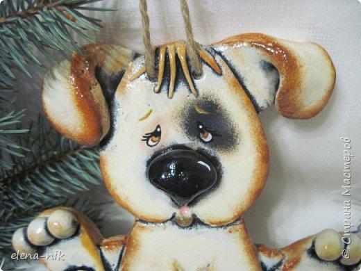 Маленькая собачка до старости щенок. Маленькая мукосольная собачка раскрашена и готова к фотосессии. фото 2