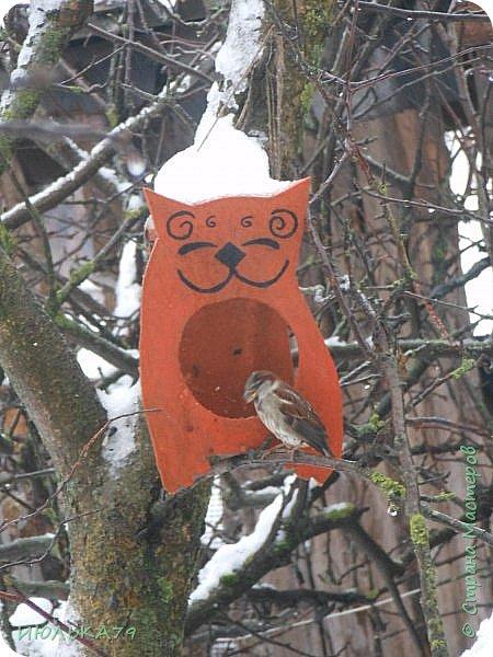 """Вот такую кормушку сотворили мои мужички на конкурс """"Покормите птиц зимой!"""". В эксплуатации она уже, практически, год.Я думаю, сейчас она вполне актуальна.Идейка, возможно, со страниц Страны Мастеров. фото 2"""