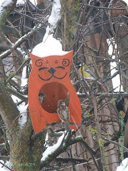 """Вот такую кормушку сотворили мои мужички на конкурс """"Покормите птиц зимой!"""". В эксплуатации она уже, практически, год.Я думаю, сейчас она вполне актуальна.Идейка, возможно, со страниц Страны Мастеров. фото 1"""