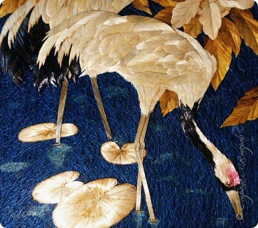 журавль – священная птица, символ здоровья, долголетия и счастья. фото 3