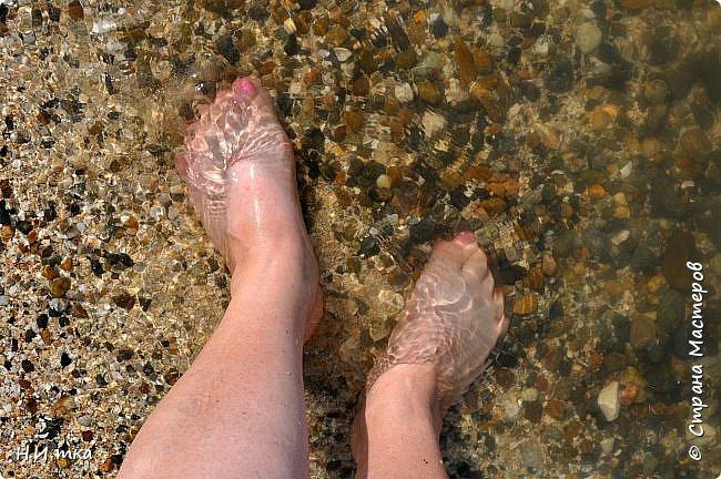 Побывала я нынче в тёплых краях в сентябре. В моей ладони ракушечник с пляжа Азовского моря.  Начну с Краснодара, и расскажу всё по порядку. фото 40