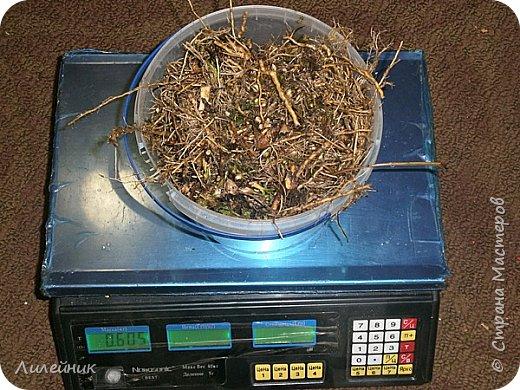 .Привет всем, я к вам снова со своим варевом. Сначала нашла в интернете таблицу с каких трав можно получить тот  или иной цвет   морилки. Меня давно заинтересовал зелёный цвет который можно было получить с корней полынь-травы. Давно я планировала сварить морилку, времени все не хватало, а тут пообещали в начале декабря снег, куда же дальше откладывать  свой эксперемент.  фото 3