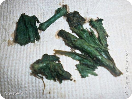 .Привет всем, я к вам снова со своим варевом. Сначала нашла в интернете таблицу с каких трав можно получить тот  или иной цвет   морилки. Меня давно заинтересовал зелёный цвет который можно было получить с корней полынь-травы. Давно я планировала сварить морилку, времени все не хватало, а тут пообещали в начале декабря снег, куда же дальше откладывать  свой эксперемент.  фото 14