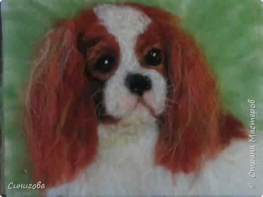 Петрова Марина- рисунок из шерсти фото 3