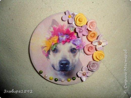 магниты к году собаки фото 7