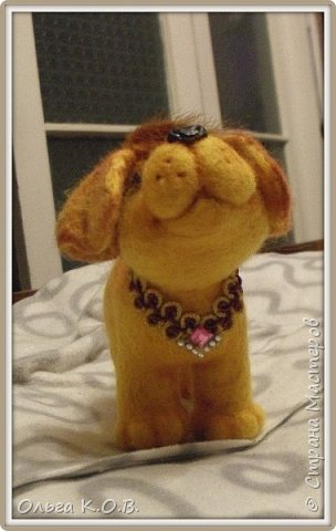 Фотосессия  радостной собачки фото 3