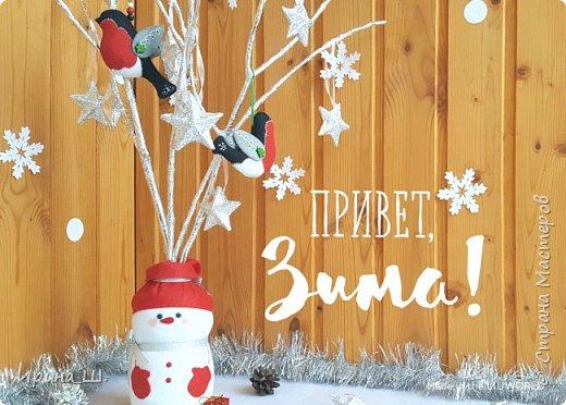 Альтернатива елочке для новогоднего декора, мастер-класс