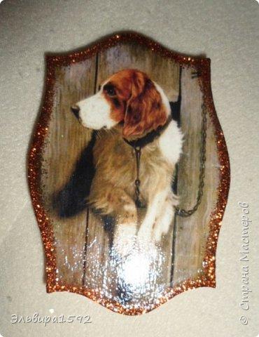 магниты к году собаки фото 13