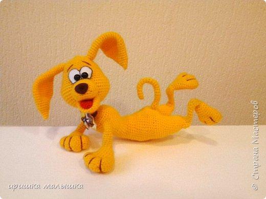 Собака танцевака. фото 4